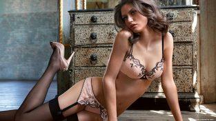 online sex toys shops & Hotties In Charlotte – New Mesmerizing European Virtual Dates BDSM